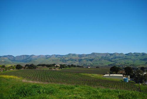San Luis Obispo Rolling Hills2 (1 of 1)