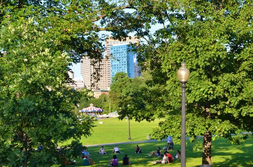 Boston Commons (1 of 1)