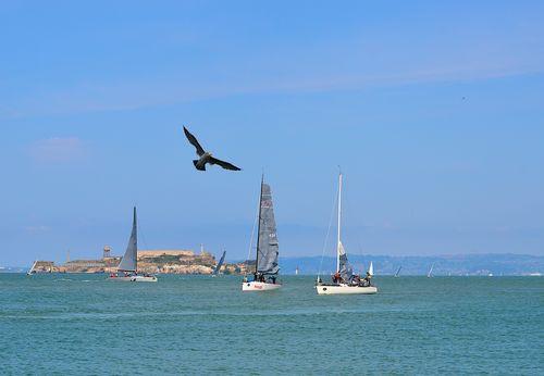 Alcatraz and sailboats (1 of 1)