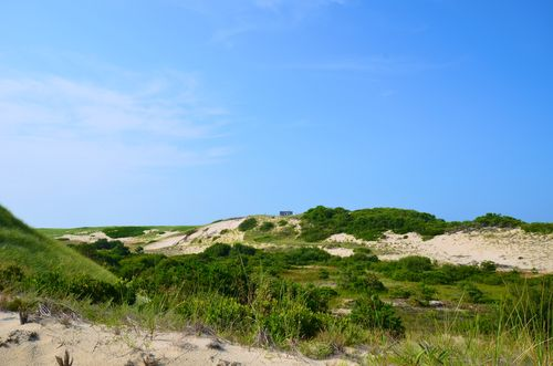 Cape Cod National Seashore, Dunes (1 of 1)