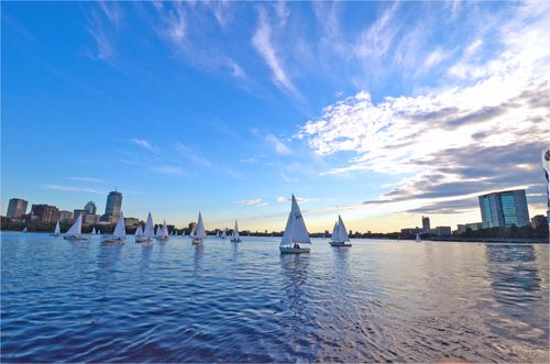 Boston Landscape Charles River, Photo by Donna Barnett for Chasing Clean Air