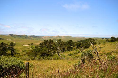 Pt. Reyes Pastoral Land (1 of 1)