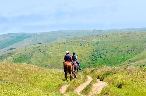Horseback riders (1 of 1)