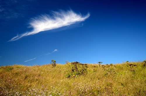 Point Reyes Hike Clouds (1 of 1)