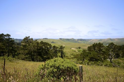 Point Reyes Pastoral Land