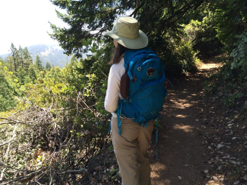 Hiking Mount Tam in Marin County