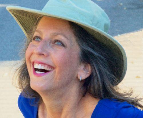 Donna Barnett chasingcleanair.com
