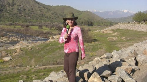 Donna Chasing Clean Air Three Rivers