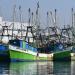 FishingboatsMazatlan