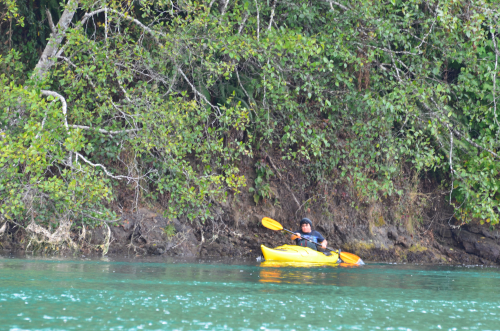 Kayaker on Big River, Mendocino