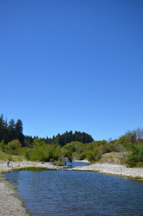 Navarro River and Clean Air Blue Skies
