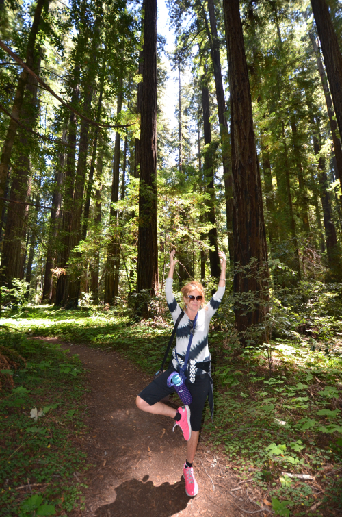 Standing Tree Pose Amongst the Trees